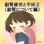 副腎疲労と不妊①(副腎について編)