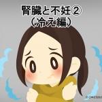 腎臓と不妊②(冷え編)