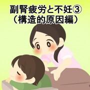 副腎疲労と不妊③(構造的原因編)