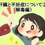 肝臓と不妊症について②(解毒編)